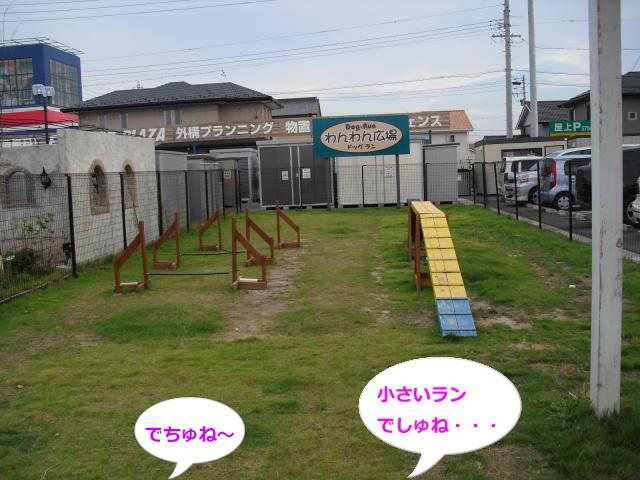 005_convert_20100906064012.jpg