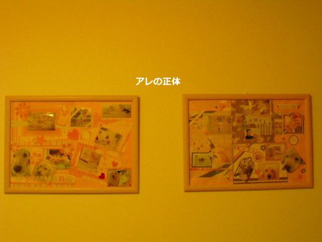 005_convert_20100907080937.jpg