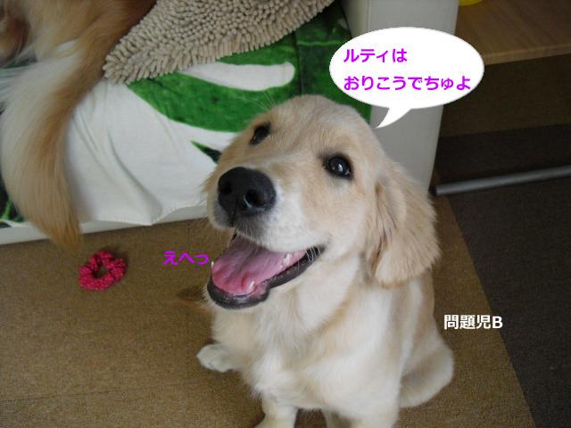 005_convert_20100908080103.jpg