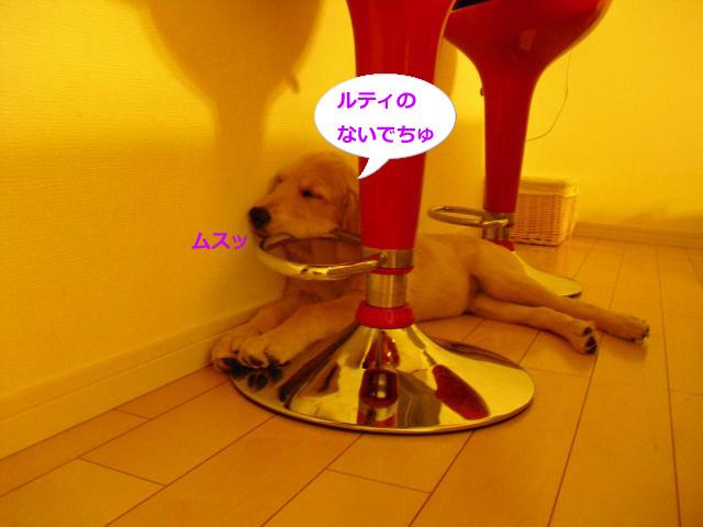 006_convert_20100907081016.jpg