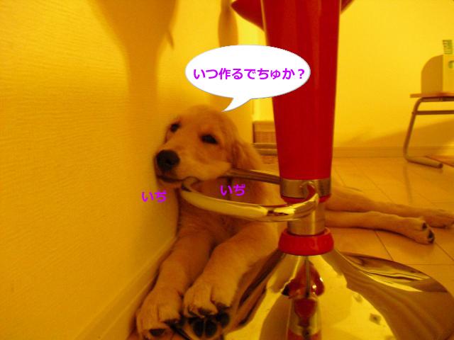 011_convert_20100907081205.jpg