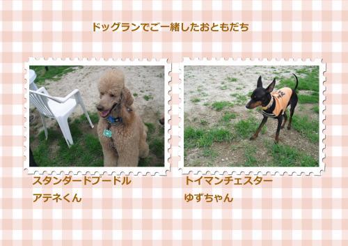 014-58_convert_20100626085600.jpg
