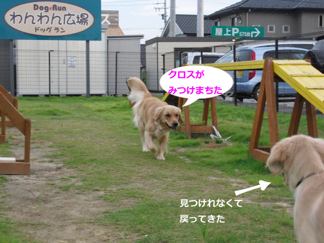 018_convert_20100906064405.jpg