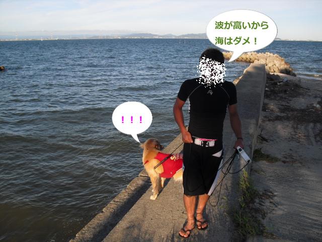 028_convert_20100830083024.jpg
