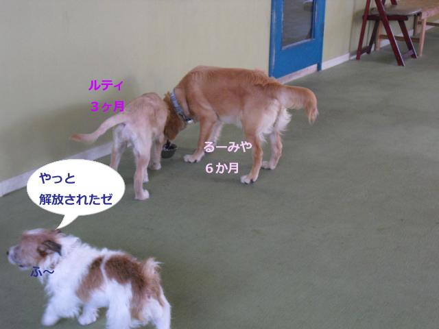 082_convert_20100910082128.jpg