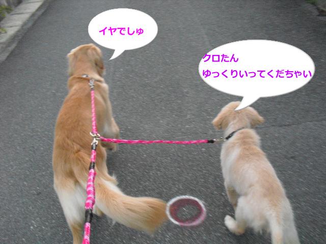 009のコピー-98