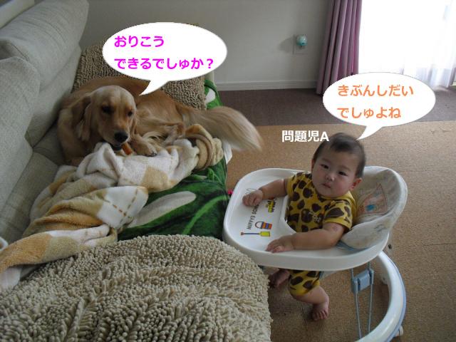 001_convert_20100908080016のコピー