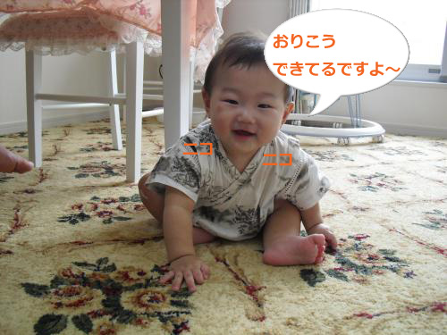 CIMG3531_convert_20100917081644.jpg