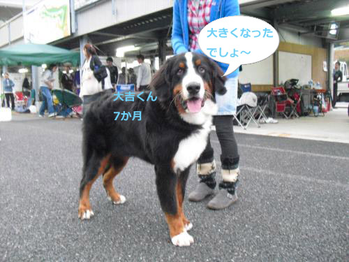 CIMG3924_convert_20101025082342.jpg