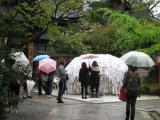 2012/5京都20