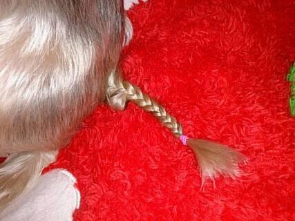 クラリスのしっぽ三つ編み