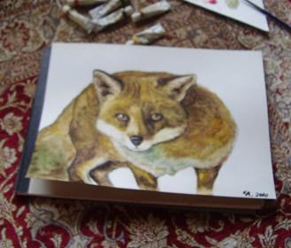 fox3.jpg
