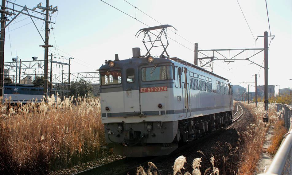 12-01-11-EF652074.jpg