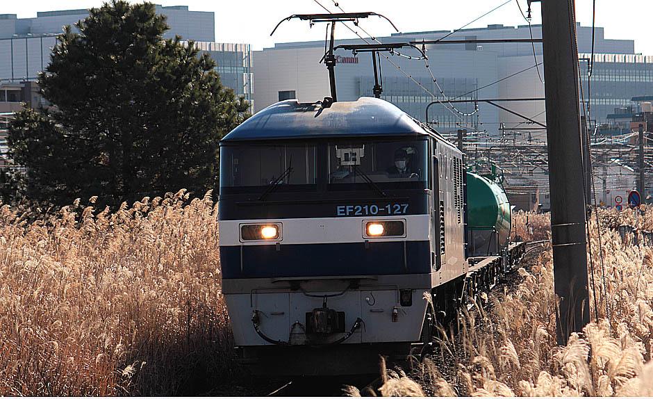 13-1-11-EF210127.jpg