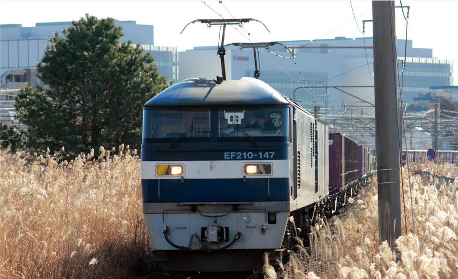 13-1-11-EF210147.jpg