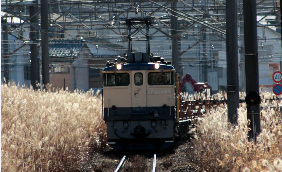 13-1-11-EF651103.jpg