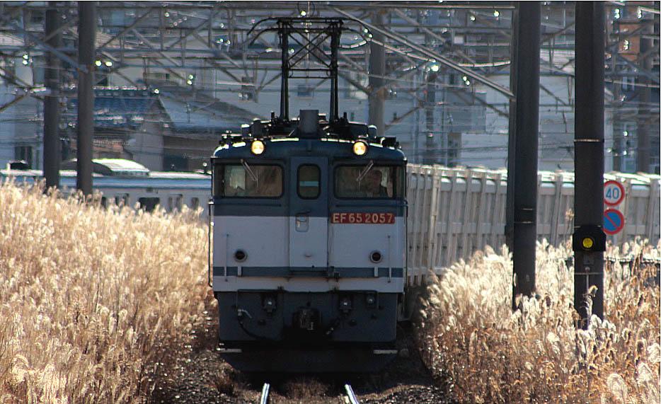 13-1-11-EF652057.jpg