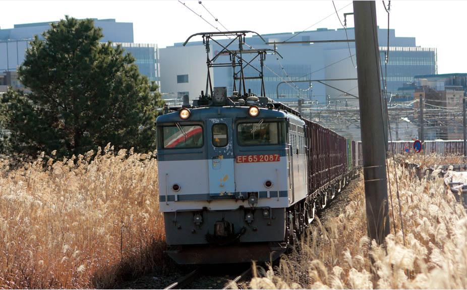 13-1-11-EF652087.jpg