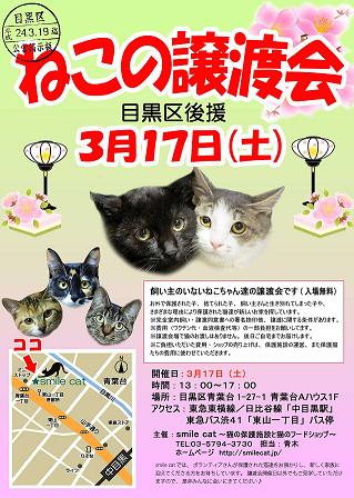 3/17SC譲渡会チラシ