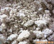 麦麹と塩投入