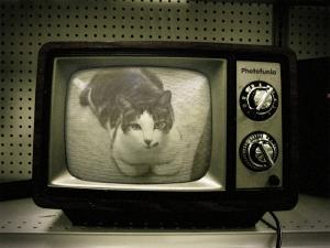 テレビの中に!!