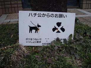 渋谷区の守り神・忠犬ハチ公くん