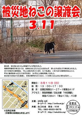 3/11SC譲渡会チラシ