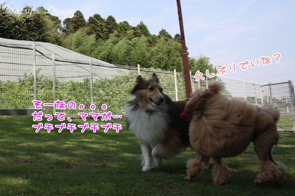 2011081910.jpg