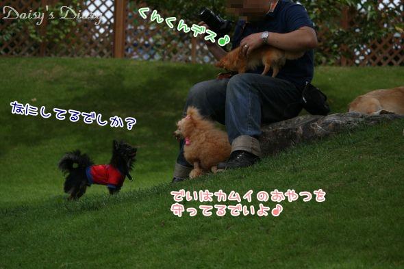 2011090510.jpg