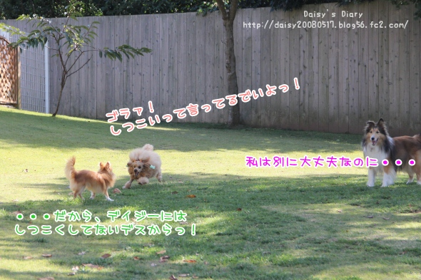 2011102911.jpg