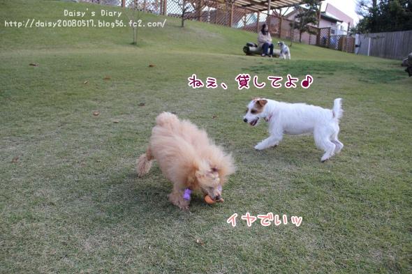 2011111305.jpg