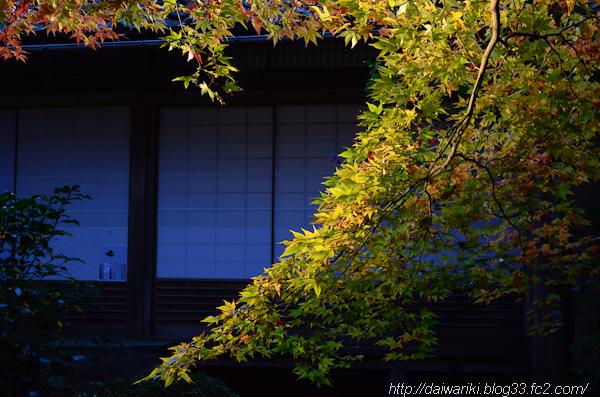 20141126_15.jpg
