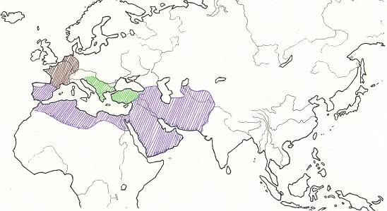 イスラム帝国ほか