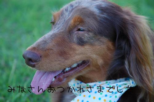 DSC_6839.jpg