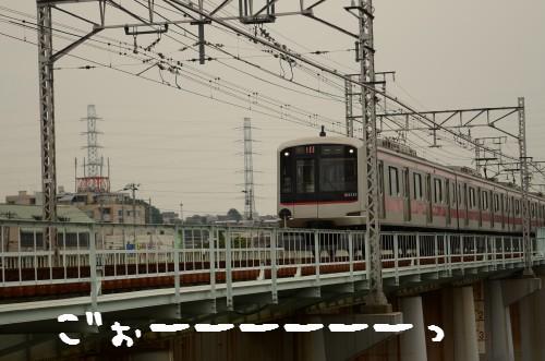 20110612_028.jpg