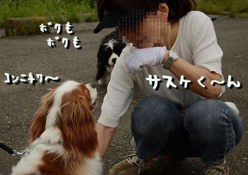 20110618_002.jpg