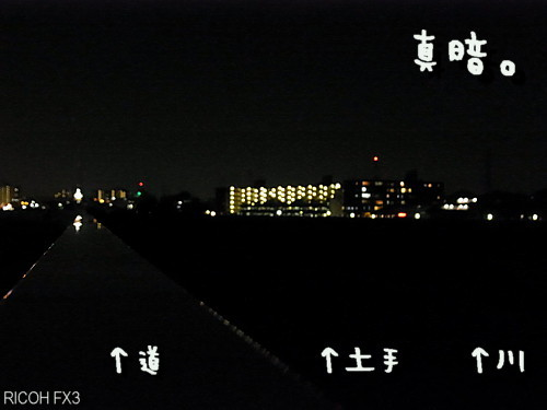 R1035666.jpg
