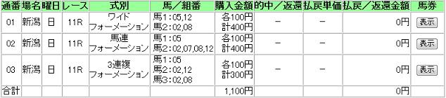 新潟11R