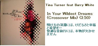 TinaTurner feat Barry White-In Your Wildest Dreams (Crossover Mix)