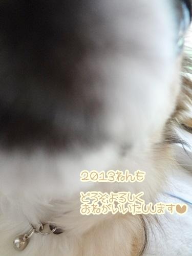 20130101loco.jpg