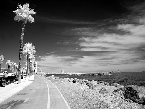 12_11_08_long_beach.jpg