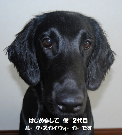 20111017-a
