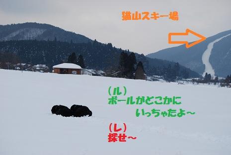 2012-1-9-bourudoko.jpg