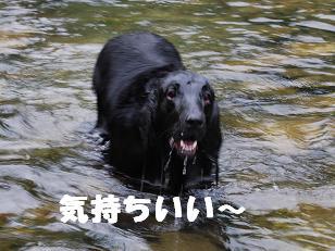 kawa117302.jpg