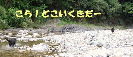 kawa117305.jpg