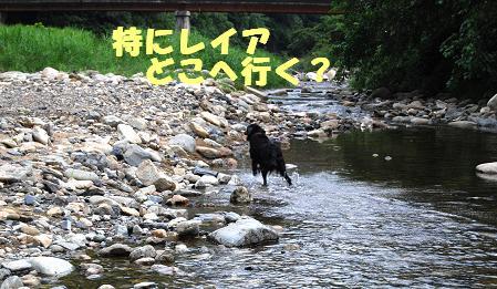 kawa117306.jpg