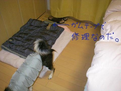 あおのベッド。