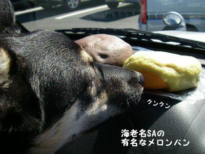 メロンパンで腹ごなし。