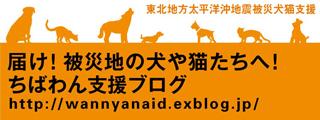 届け!被災地の犬や猫たちへ!(ちばわん支援ブログ)