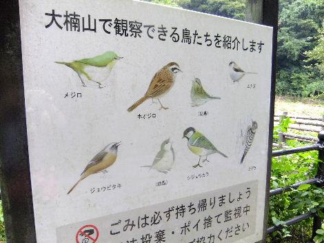 2011_09220052.jpg